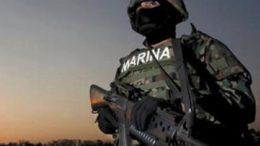 615398_marina