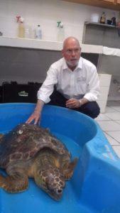 profepa_rescate-de-tortuga-marina-varada-en-plaza-costa-azul%2c-tamaulipas-1