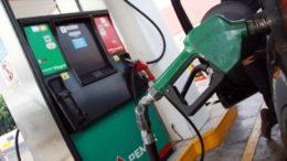 gasolina-3-1024x683